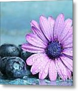 Blueberries And Daisy Metal Print