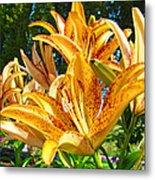 Bold Colorful Orange Lily Flowers Garden Metal Print