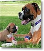 Boxer Mommy And Pup Metal Print
