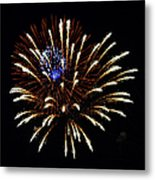 Bursting Out With Color Metal Print by Sandi OReilly