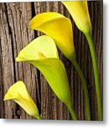 Calla Lilies Against Wooden Wall Metal Print by Garry Gay