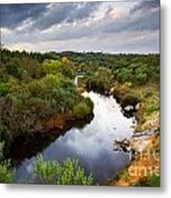 Calm River Metal Print by Carlos Caetano