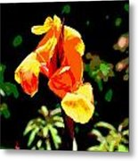 Canna In Summer Metal Print