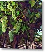 Cascading Grapes Metal Print