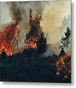 Controlled Fires Burn Eagerly In Small Metal Print by Melissa Farlow