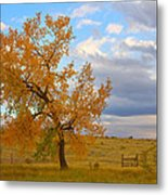 Country Autumn Landscape Metal Print by James BO  Insogna