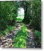 Country Road Metal Print by Carol Groenen