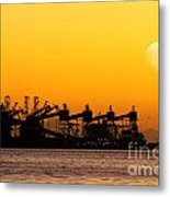 Cranes At Sunset Metal Print by Carlos Caetano