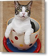 Cup O Tilly 3 Metal Print by Andee Design