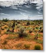 Desert Of New Mexico Metal Print