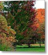 Distant Fall Color Metal Print