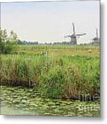 Dutch Landscape With Windmills And Cows Metal Print by Carol Groenen