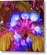 Electric Mimosa Metal Print by Juliana  Blessington