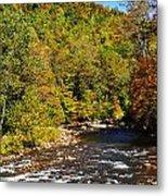 Fall Along Elk River Metal Print by Thomas R Fletcher