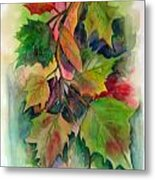 Fall Colors Metal Print by John Smeulders