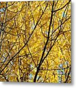 Fall Trees Art Prints Yellow Autumn Leaves Metal Print
