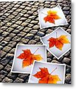 Fallen Autumn  Prints Metal Print