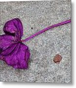 Fallen Purple Leaf Metal Print by Robert Ullmann