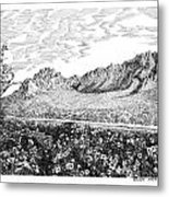 Florida Mountains And Poppies Metal Print by Jack Pumphrey