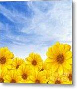 Flowers Over Sky Metal Print