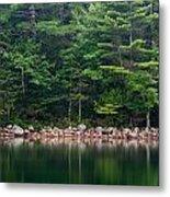 Forest At Jordan Pond Acadia Metal Print