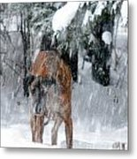Great Dane Rufus Looking Into A Blizzard Metal Print