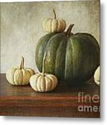 Green Pumpkin And Gourds On Table  Metal Print by Sandra Cunningham