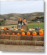 Halloween Pumpkin Patch 7d8478 Metal Print