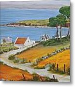 Irish Seaside Village Metal Print by Siobhan Lawson
