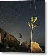 Joshua Tree Star Trails Metal Print by Dung Ma