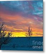 Larimer County Winter Sunrise Metal Print by Harry Strharsky
