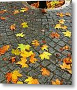 Leafs In Ground Metal Print