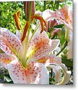 Lily Flowers Floral Prints Photography Orange Lilies Metal Print