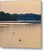 Morning Along The Schuylkill River Metal Print