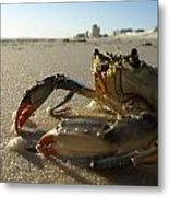 Mr. Crabs Metal Print