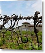 Old And New  Metal Print by Lainie Wrightson