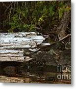 Old Broken Tree Metal Print