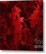 Old Red Metal Print by Marjorie Imbeau