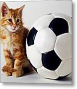 Orange And White Kitten With Soccor Ball Metal Print