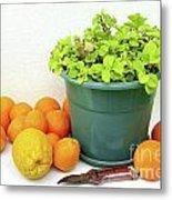 Oranges And Vase Metal Print