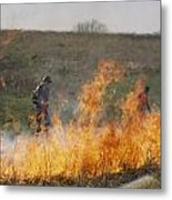 Park Workers Set A Controlled Fire Metal Print by Annie Griffiths