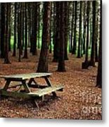 Picnic Table Metal Print by Carlos Caetano