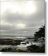 Point Lobos View Metal Print by Suzanne Lorenz