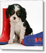 Puppies With A Childs Rain Boots Metal Print