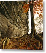 Raven Rock And Autumn Colored Beech Metal Print