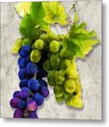 Red And White Grapes Metal Print