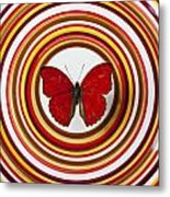 Red Butterfly On Plate With Many Circles Metal Print by Garry Gay