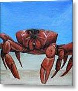 Red Crab Metal Print