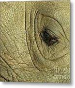 Rhino Eye Metal Print