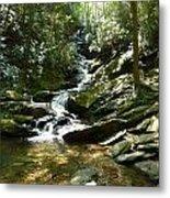 Roaring Creek Falls - II Metal Print by Joel Deutsch